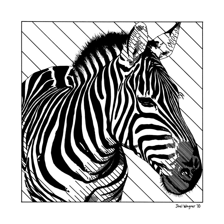 Vanishing Zebra