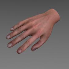 CG Hand